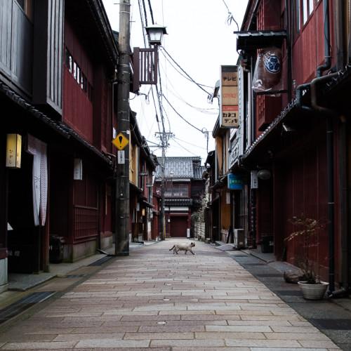 Kanazawa-332